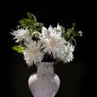 Поздние хризантемы. :: Лилия *