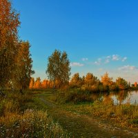 Дорога в осень :: vladimir Bormotov