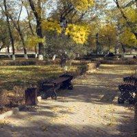 Осень в парке :: Сахаб Шамилов