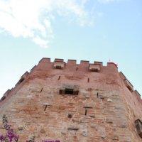 Башня в Турции :: Артем Бардюжа