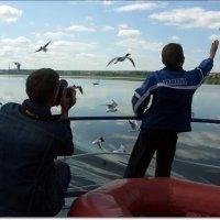 Фотограф щёлкает и птичка вылетает... :: muh5257