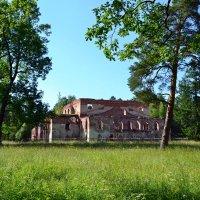 Развалины в парке :: Ольга