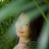 портрет :: Наталья Краснюк
