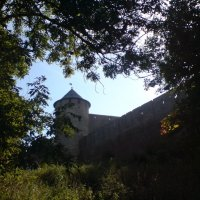Крепость в Ивангороде :: Наталья Рябкова