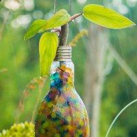 цветок из лампочки :: Адик Гольдфарб