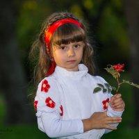 Маленький шиповник :: Tim Bereshev