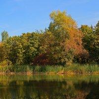 Осень :: leoligra