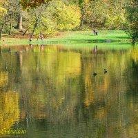 Осень в парке :: Evgenij Schleinikov