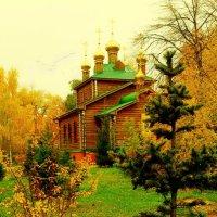 В осеннем окружении :: Григорий Кучушев