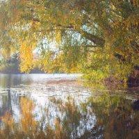 Осень на реке :: Кристина Волкова(Загальцева)