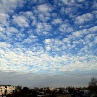 Утреннее небо 2 :: Ирина Федоренко