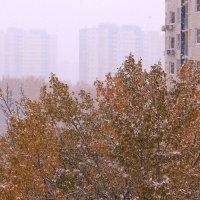 У природы нет плохой погоды :: Татьяна Ломтева