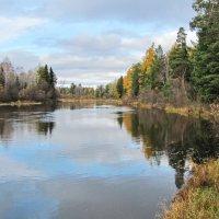 На реке в октябре :: Юрий Кузмицкас