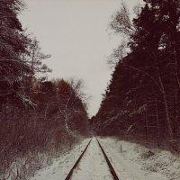 Осень vs. Зима :: Кристина Кеннетт