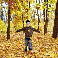 Любимая пора - осень золотая :: Сергей S.Tulpan