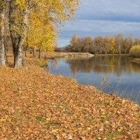 Осенняя речная :: Любовь Потеряхина
