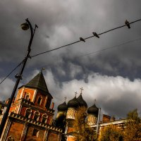 В Измайловском парке,Москва :: Людмила Комарова