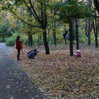 В осеннем парке. :: Сергей Касимов