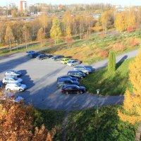 Осень, вид из окна :: Наталья Лунева