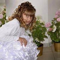 Цветы :: Olga Zhukova