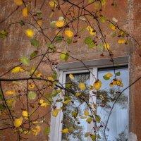 Стучится осень к нам в окно... :: Лилия *
