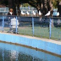 В парке... кто гуляет, а кто просто сидит. :: Александр Скамо
