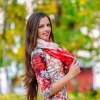 Осенний портрет. 11. :: Анатолий Клепешнёв