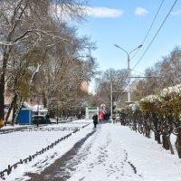 Тропинки в городе :: юрий Амосов
