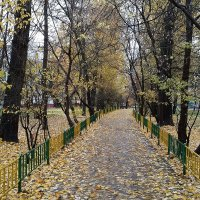 Осень :: Елена Каталина