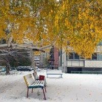 Октябрь. Вот и встретились осень с зимою... :: Надежда