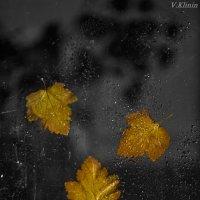 Осенние зарисовки... :: Валерий Клинин