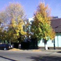 В Житомире осень :: Миша Любчик