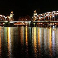 Большеохтинский мост :: Laryan1