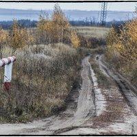 Дорога в пасмурную осень. :: Юрий Клишин