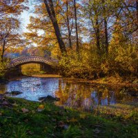 Китайский мостик в Парке Монрепо :: Дмитрий Рутковский