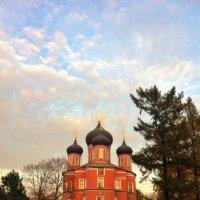 Донской монастырь главный собор :: Ирина Бирюкова