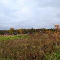 октябрь в деревне :: Валентина. .