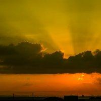 sunrise tel-aviv :: venera
