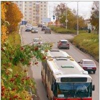 Рябиновый автобус :: Кай-8 (Ярослав) Забелин