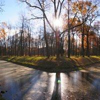 Осеннии панорамы из Александровского парка :: tipchik