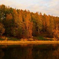 Золотая осень!!! :: Олег Семенцов