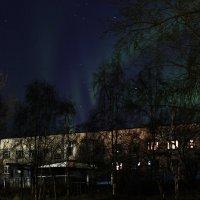 Морозная ночь :: Даниил Николаев