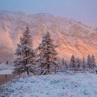 Снежный рассвет :: Кирилл Уютнов