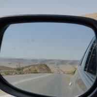 пустыня Негев :: lemur1231 Красавец
