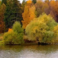 Осень на Долгом пруду :: анна нестерова