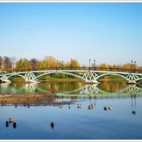 Осень в Царицыно :: Ирина Князева