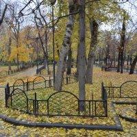 Осень в Москве. :: Oleg4618 Шутченко