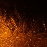 Узоры октябрьской ночи. :: Galina S*
