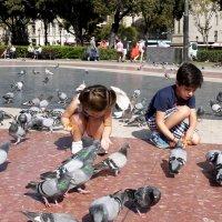 голуби и дети :: Тамара Бердыева