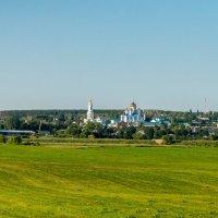 Задонский Рождество-Богородицкий мужской монастырь. :: Юрий Бичеров
